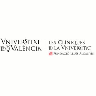 Fundació Lluís Alcanyís
